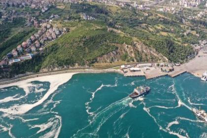 Marmara'da müsilaj tehlikesi sürüyor