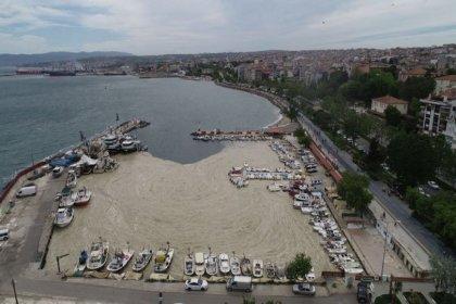 'Marmara'ya bırakılan atıklar denizi bu hale getirdi, Kanal İstanbul Marmara Denizi'ni öldürür'