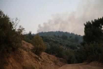 Mersin ve Hatay'da orman yangını