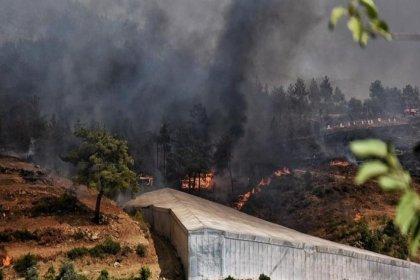 Mersin ve Hatay'daki orman yangınları kontrol altına alındı