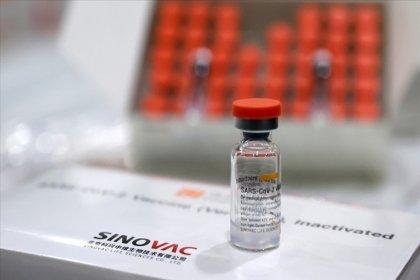 'Sinovac aşısı, İngiltere ve Güney Afrika mutantlarına karşı iyi sonuçlar verdi'