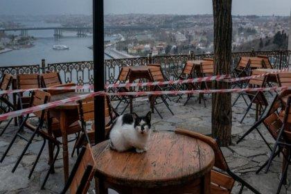TESK, olası kapanma kararına karşı taleplerini açıkladı
