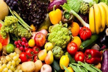 TÜİK: Tahıl ve sebze üretimi düşecek