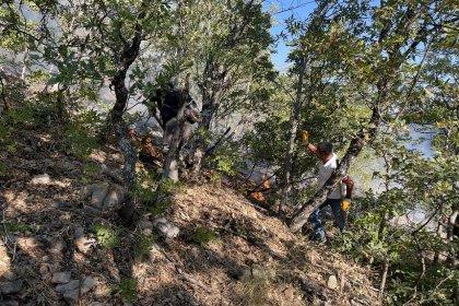 Tunceli Belediye Başkanı Maçoğlu; yangına İtfaiye ekiplerimiz, AFAD, MUDAK, Orman işletme ekipleri, Tunceli Milli Parklar ve Doğa Koruma Müdürlüğü ile gönüllüler yerde; havadan da uçak ve helikopterle müdahale edildi