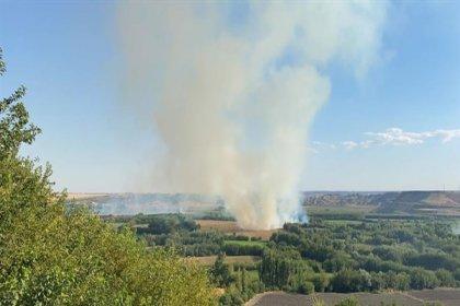 UNESCO Dünya Mirası Listesi'nde yer alan Hevsel Bahçeleri'nde yangın