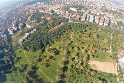 Validebağ Korusu'na millet bahçesi projesinin bilirkişi raporu: Korunun kimliği ve canlıların ekosistem içerisindeki önemi göz ardı ediliyor