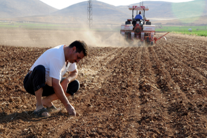 Ziraat Bankası, borçlarını ödeyemeyen çiftçilerin tarlalarını satıyor
